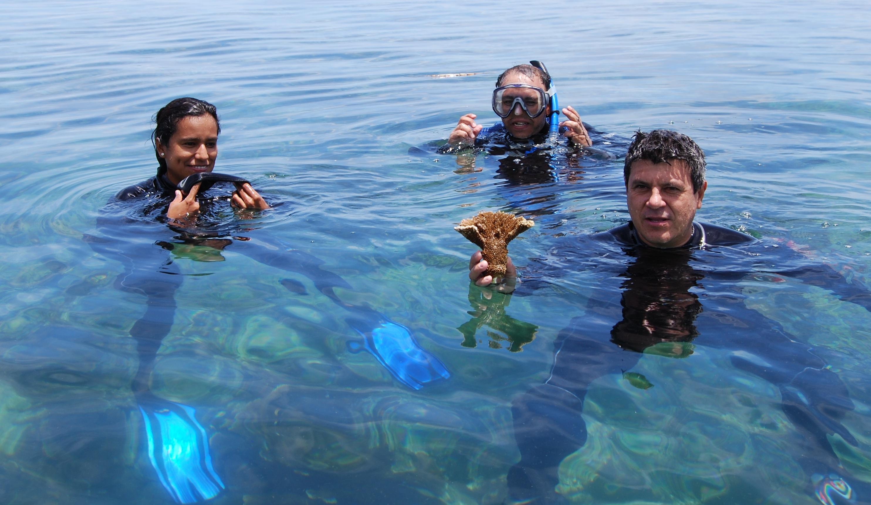 coral crew