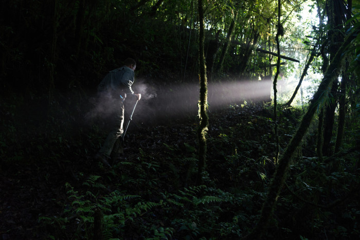 The writer, Erik Vance, explores a patch of cloud forest near El Zapotal, Veracruz. (Dominic Bracco II / Prime for Biographic)